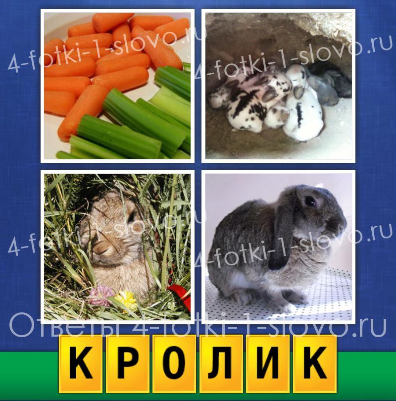 картинки 4 картинки одно слово